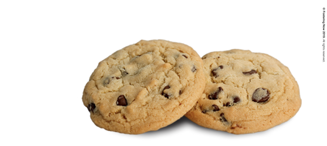 Cookies and Privacy Policy